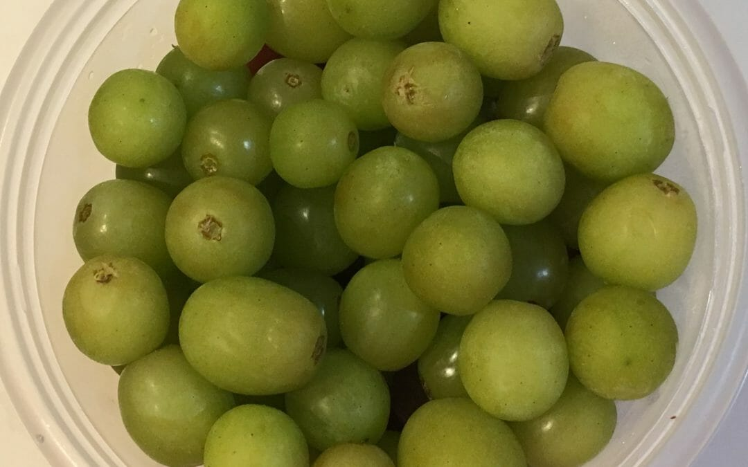 Why Frozen Grapes are THE Best Summer Snack