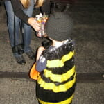 If you want a super-cute, super-easy costume to make (or your little one is obsessed with bees, as mine was), try this simple yet adorable DIY bee costume.
