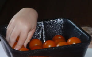 That would be Essie's hand last summer - when she wasn't even tall enough to see what was on the countertops - reaching up to snack on fresh organic cherry tomatoes.