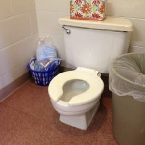 the tadpoles' big-kid toilet