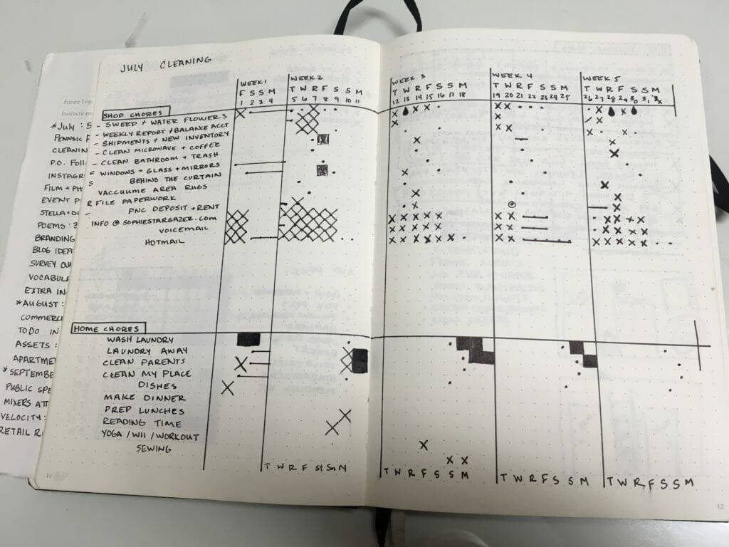 sample bullet journal cleaning log