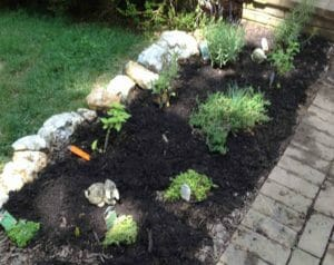 Does your family have a Tasting Garden? Ours is the girls' favorite spot in the front yard. Here's why YOUR kids will love having a Tasting Garden, too.