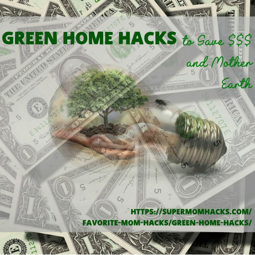 Did you know that simple changes at home can help you save money AND the environment? These green home hacks will help you do both at the same time.