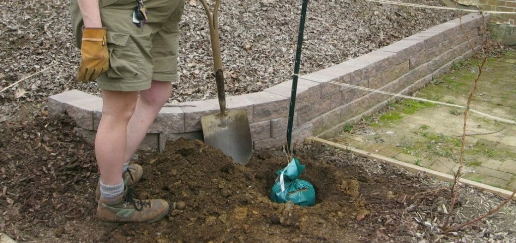 The off-season months of fall, spring, and even winter are ideal times to jump start home projects. Here, some ideas to get you started.
