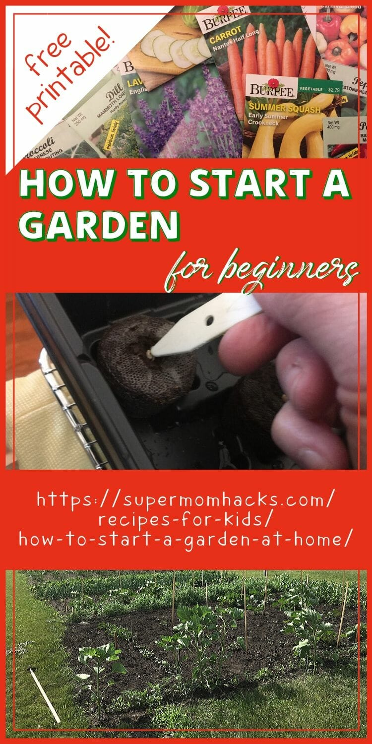 How To Start A Garden At Home