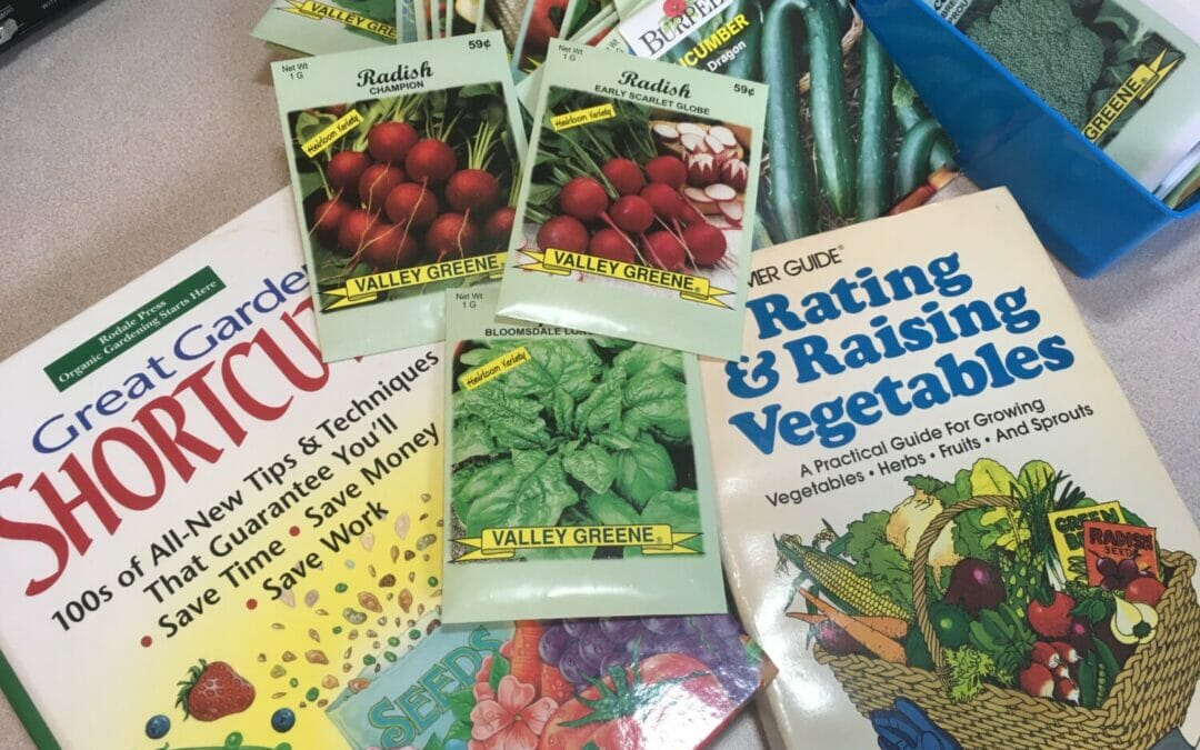Want to start a garden at home this year, but don't know where to start? Here's what you need to know about growing vegetables from seeds for beginners.